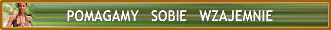 banner_2-trans